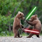 Bears With Lightsabers