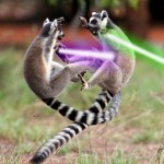 Lemurs With Lightsabers