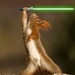 Squirrel With A Lightsaber