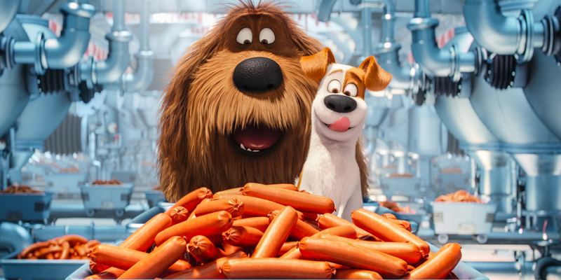 The Secret Life of Pets Quiz