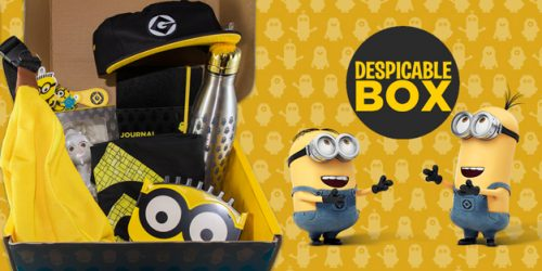 The Despicable Box is Perfect for Minion Lovers