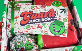 Guava Juice Box - Holiday Box