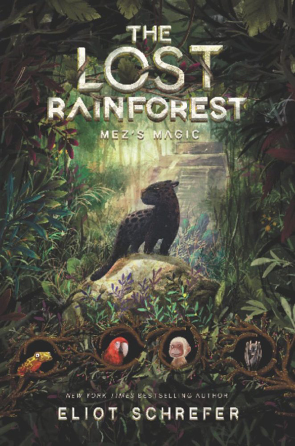 YAYBOOKS! January 2018 Roundup - The Lost Rainforest: Mez's Magic