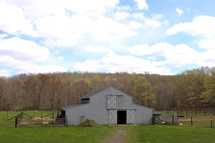 A grey barn in a grassy field surrounded by trees