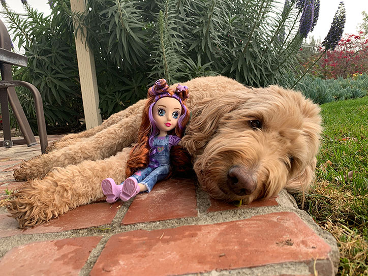 Daisy from the B-Kind Dolls snuggling with a real labradoodle in a grassy yard